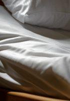 Best Adjustable Beds of 2020 Reviews Beginners Guide